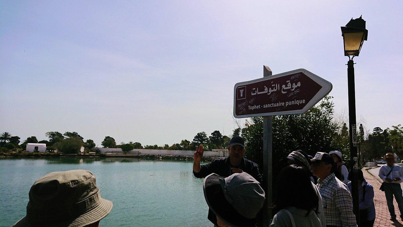 チュニジア:カルタゴ遺跡のトフェ(タニト神の聖域)近くの湖にて2