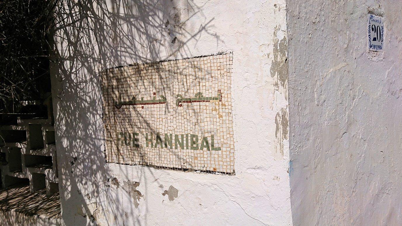 チュニジア:カルタゴ遺跡のトフェ(タニト神の聖域)近くの湖にて5