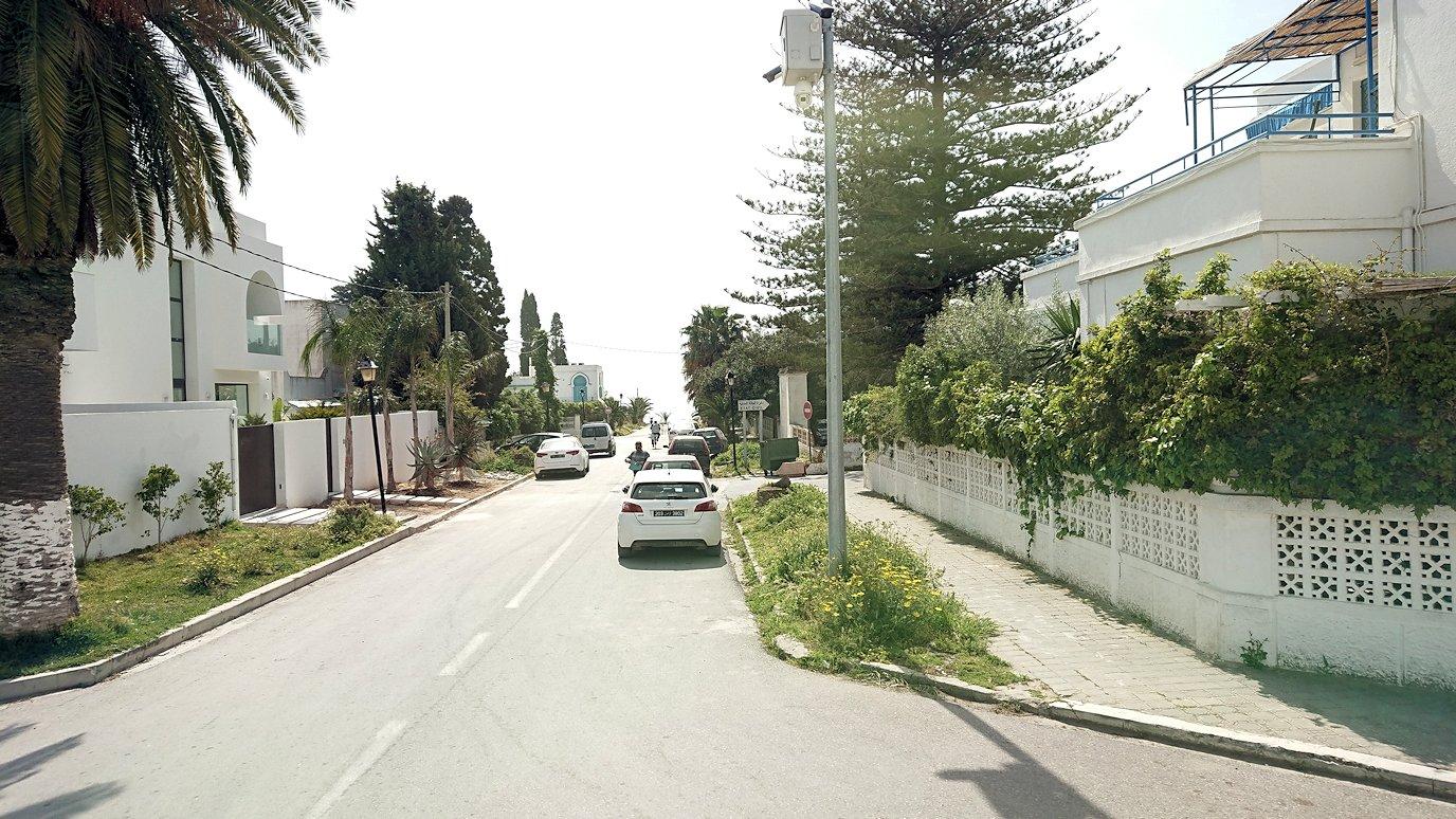 チュニジア:カルタゴ遺跡のトフェ(タニト神の聖域)近くの湖にて9