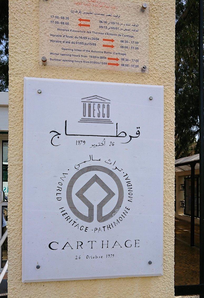 チュニジア:カルタゴ遺跡のアントニヌスの共同浴場へ向かう2