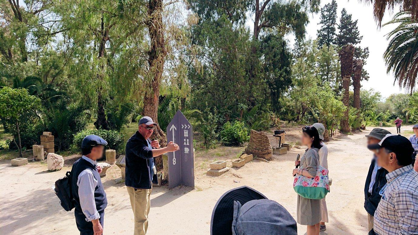 チュニジア:カルタゴ遺跡のアントニヌスの共同浴場へ入ります