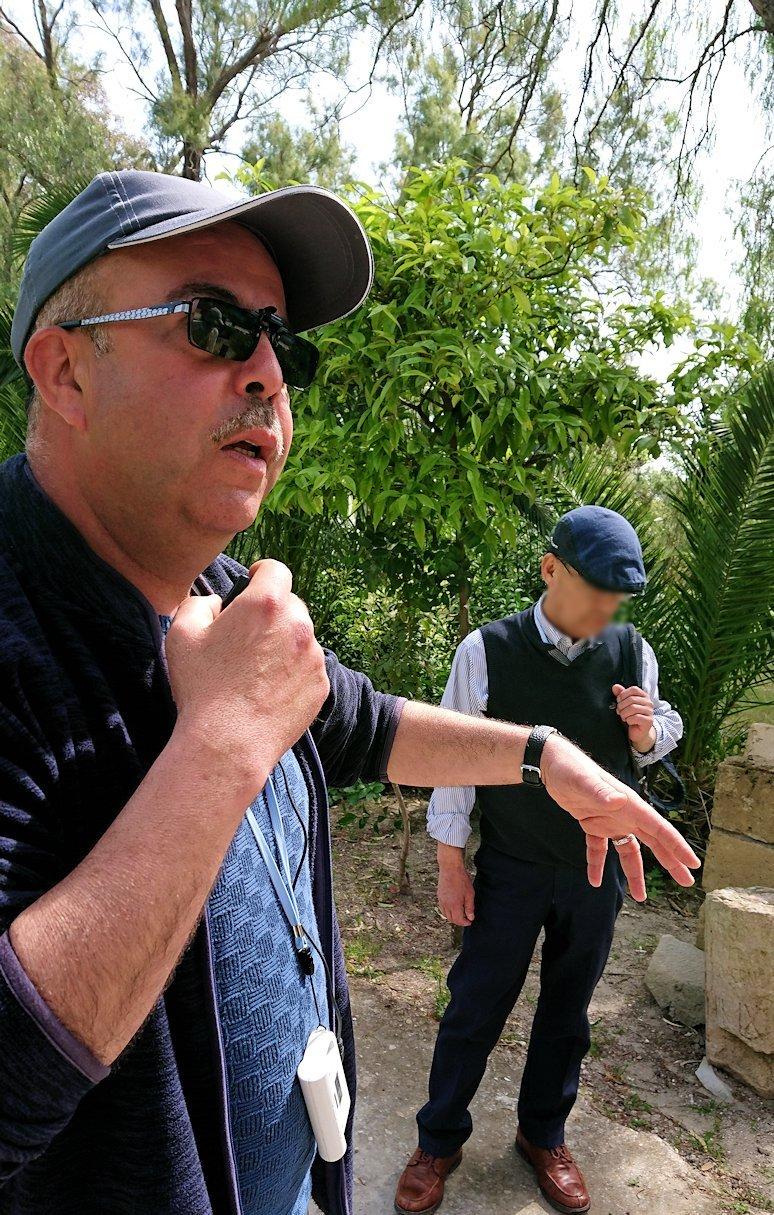 チュニジア:カルタゴ遺跡のアントニヌスの共同浴場へ入ります2