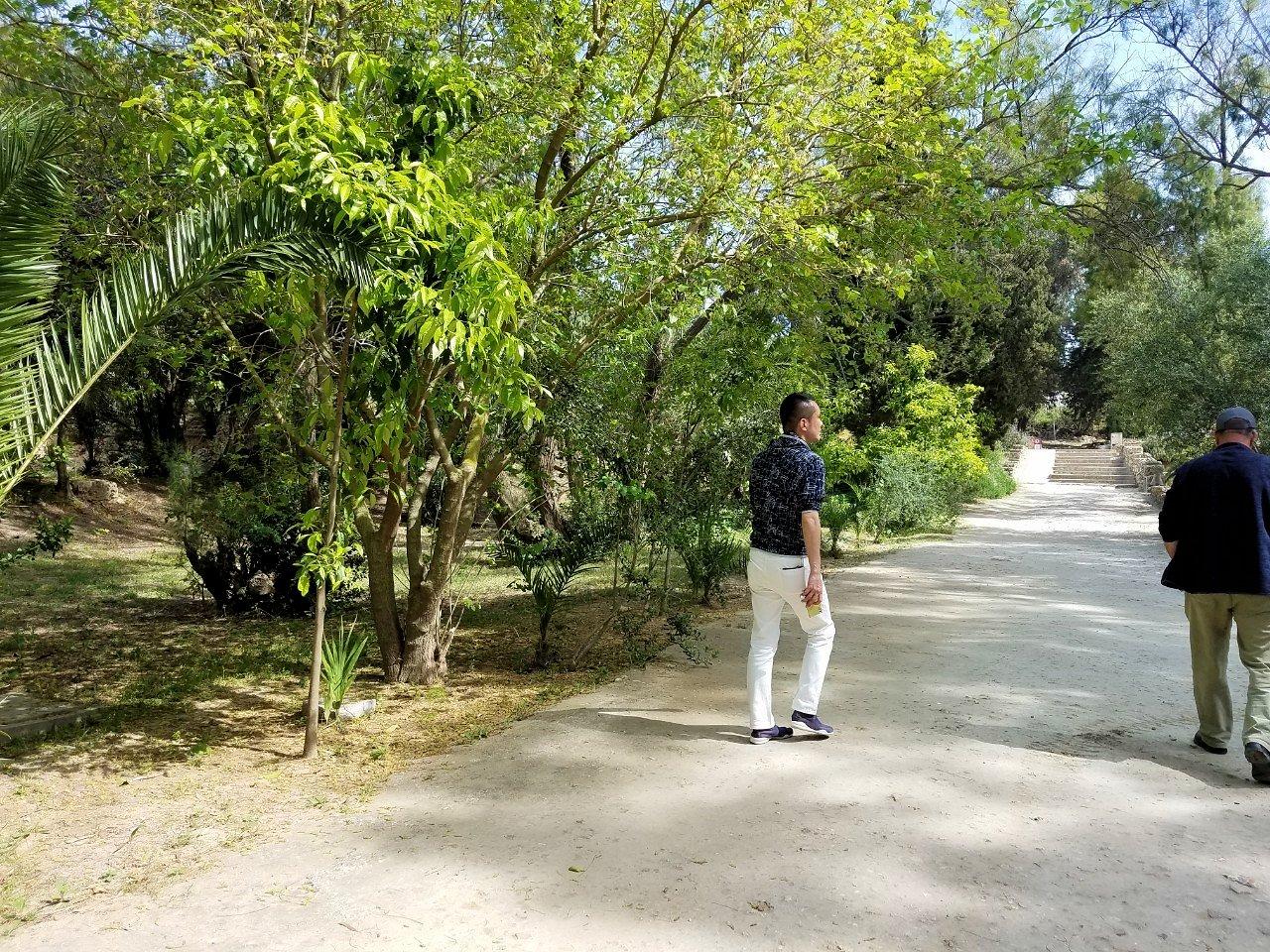 チュニジア:カルタゴ遺跡のアントニヌスの共同浴場へ入ります4