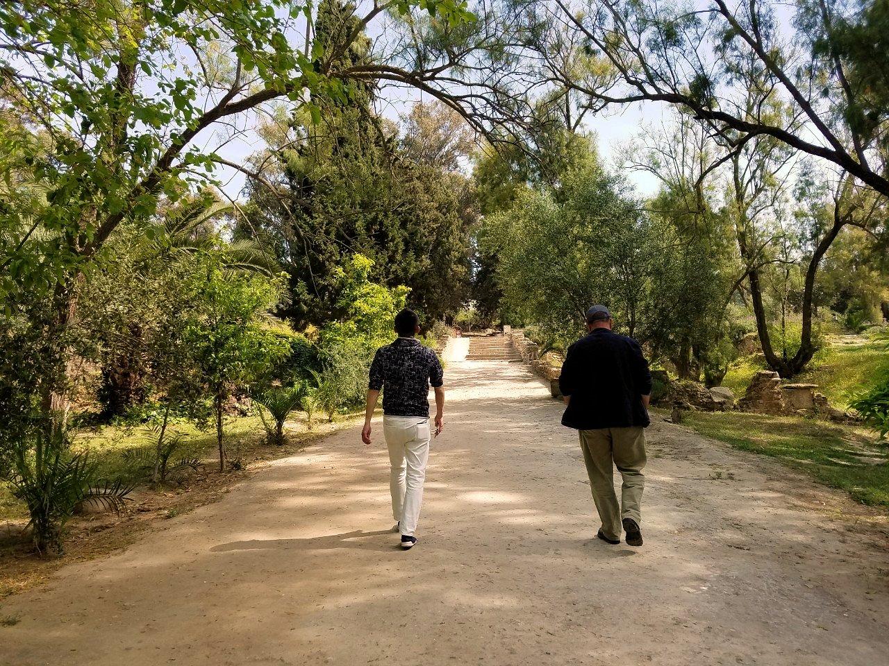チュニジア:カルタゴ遺跡のアントニヌスの共同浴場へ入ります5