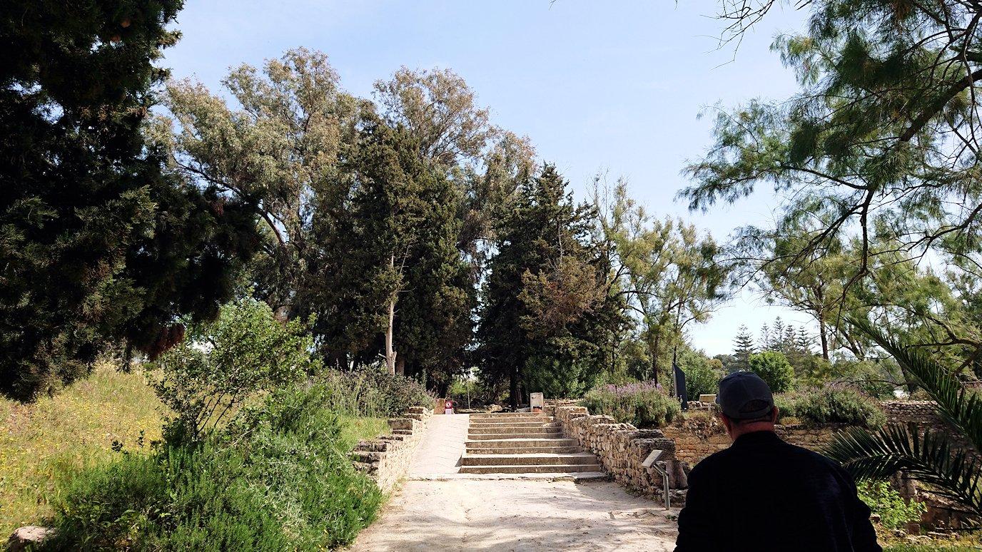 チュニジア:カルタゴ遺跡のアントニヌスの共同浴場へ入ります3