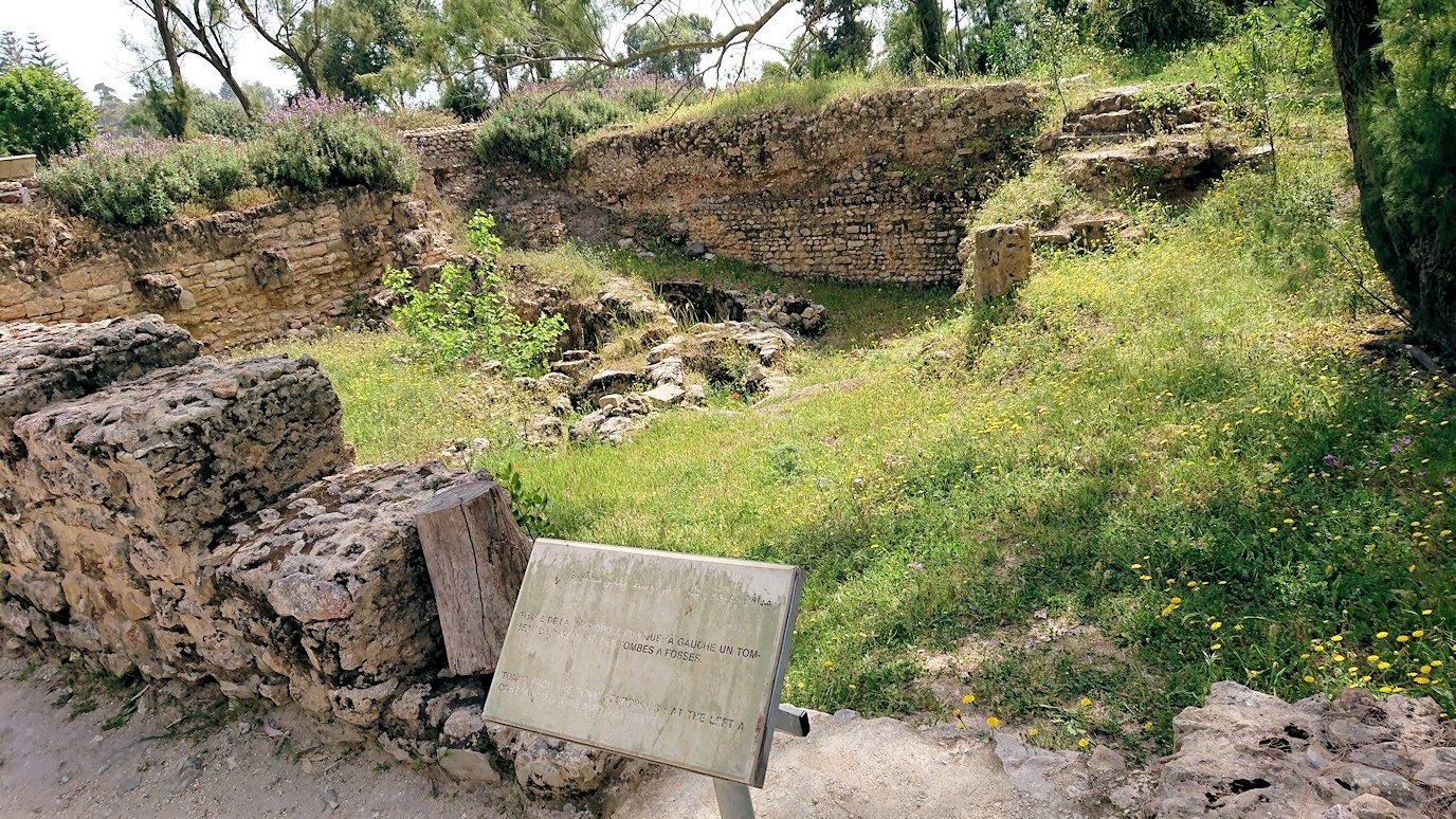 チュニジア:カルタゴ遺跡のアントニヌスの共同浴場へ入ります6