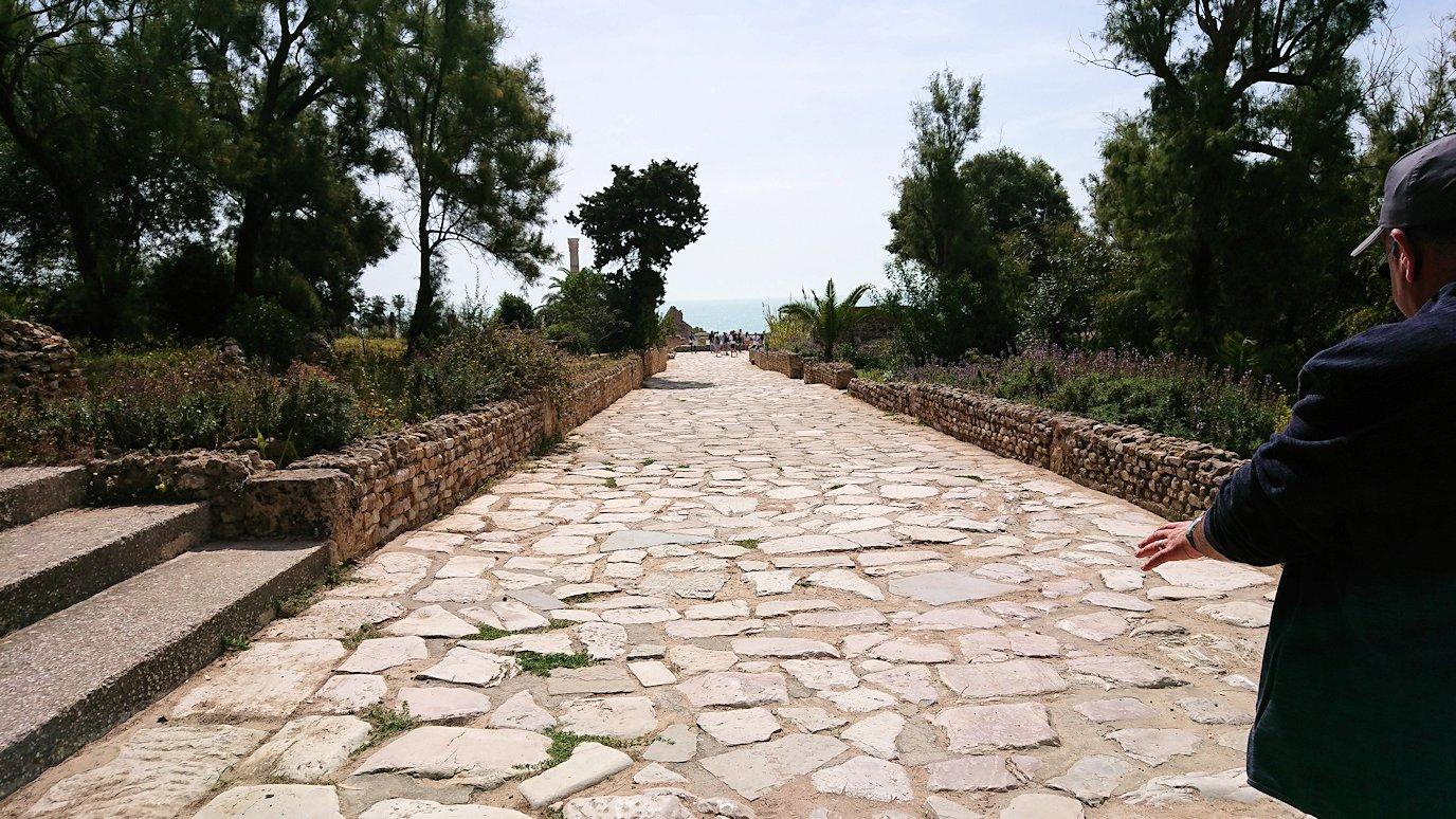 チュニジア:カルタゴ遺跡のアントニヌスの共同浴場へ入ります8
