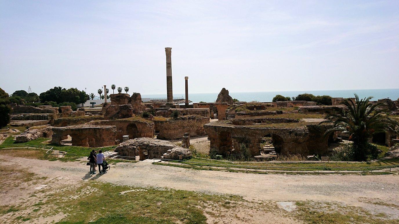 チュニジア:カルタゴ遺跡のアントニヌスの共同浴場を見下ろす