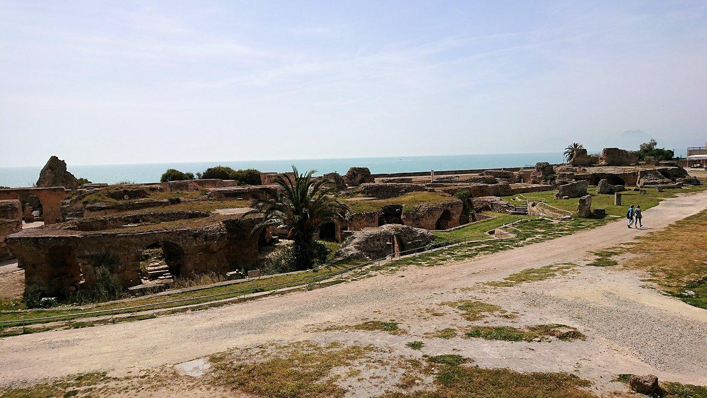 チュニジア:カルタゴ遺跡のアントニヌスの共同浴場を見下ろす1