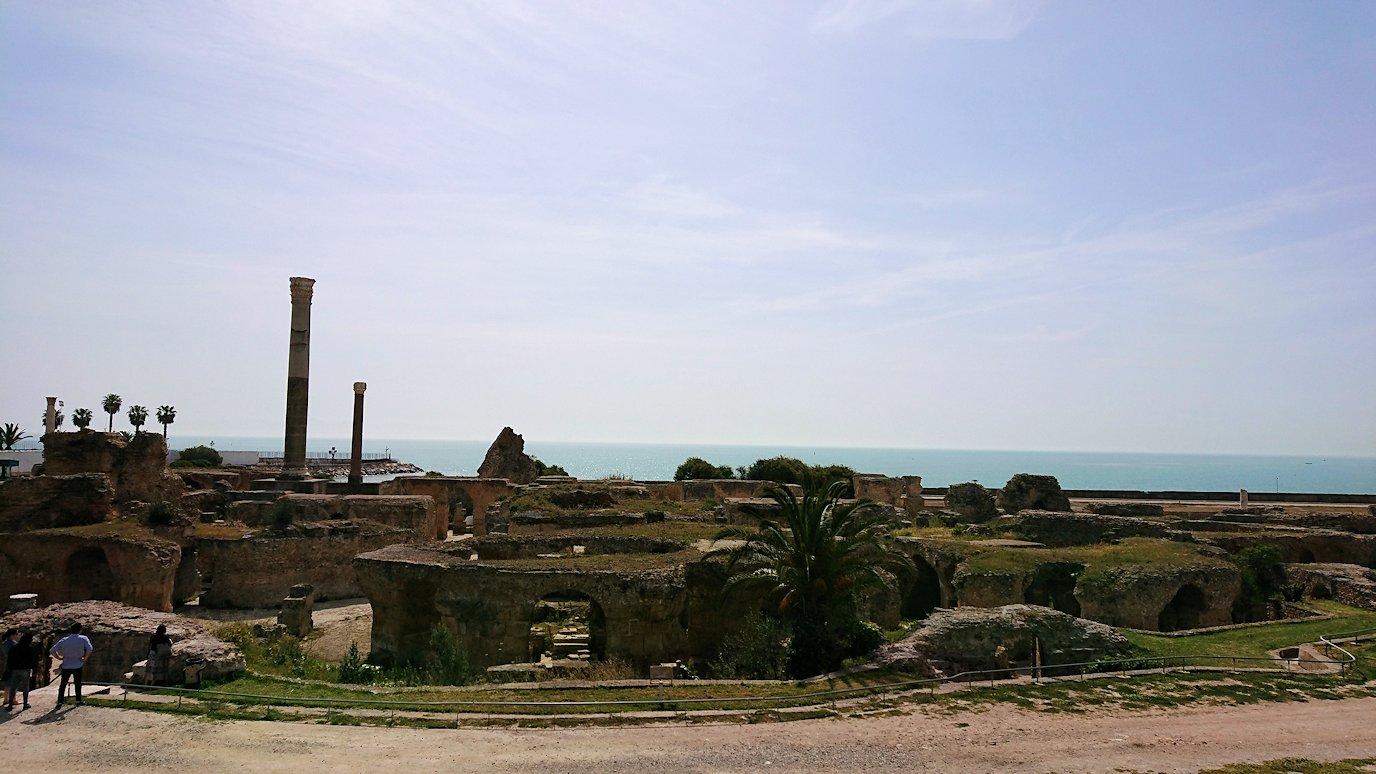 チュニジア:カルタゴ遺跡のアントニヌスの共同浴場を見下ろす4