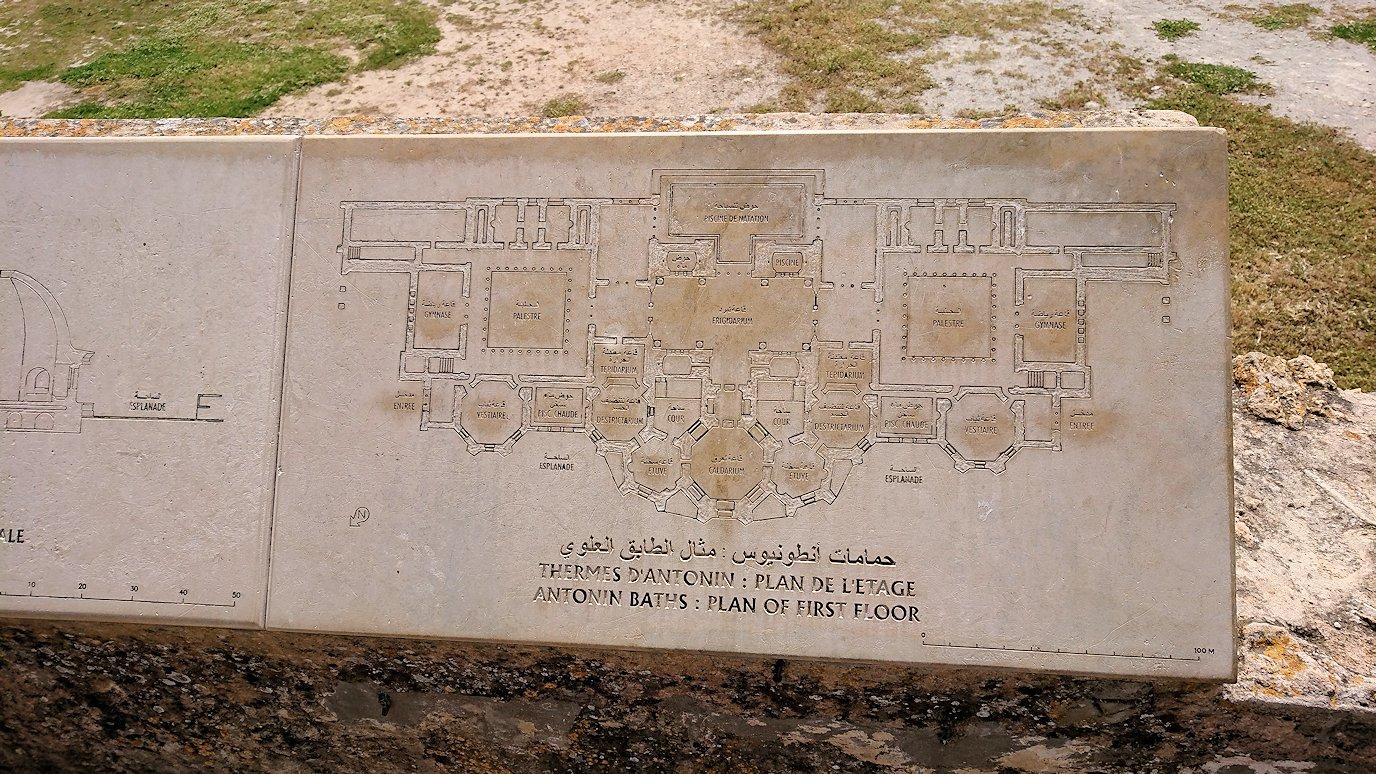 チュニジア:カルタゴ遺跡のアントニヌスの共同浴場を見下ろす5