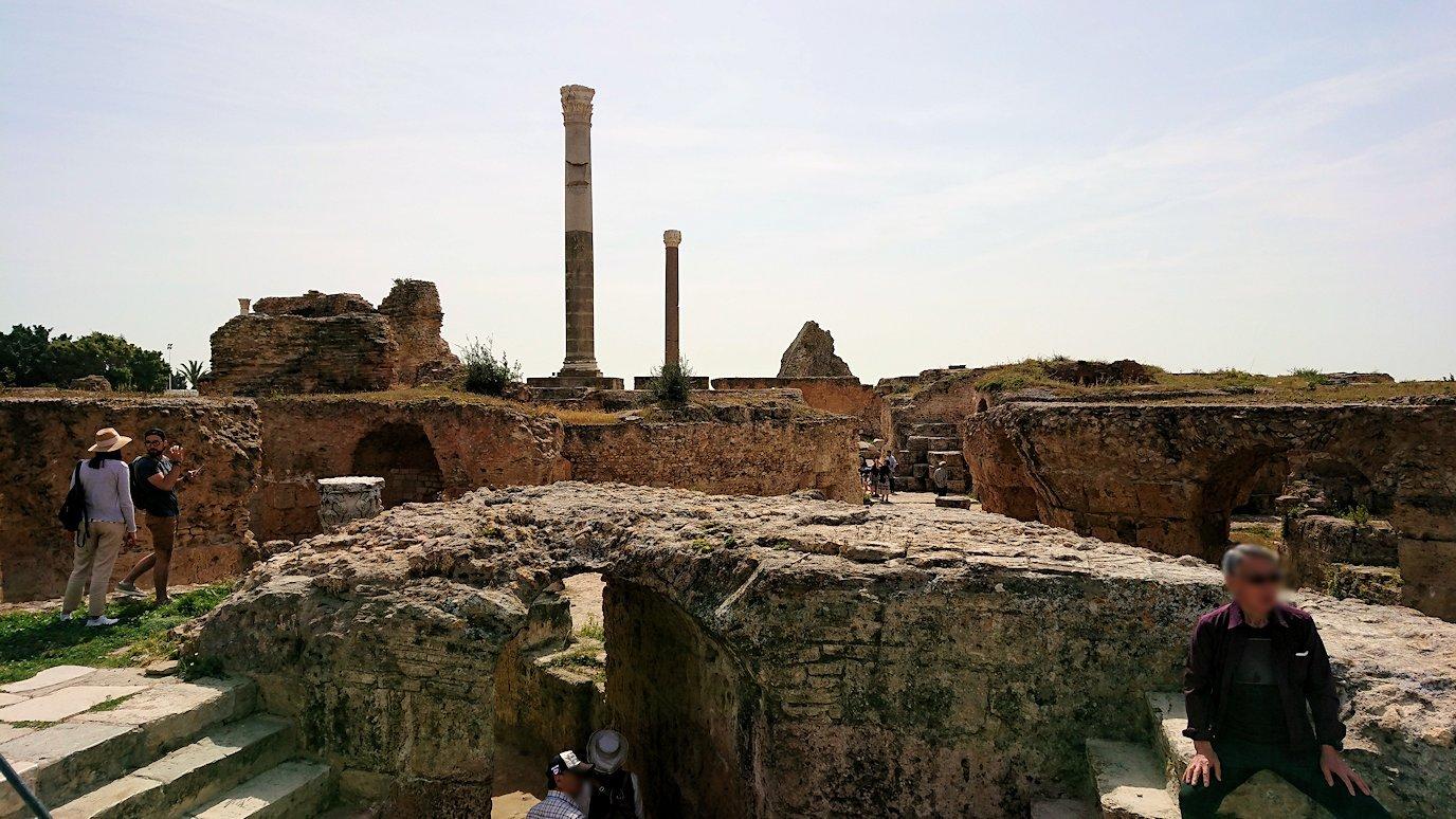 チュニジア:カルタゴ遺跡のアントニヌスの共同浴場を見下ろす7