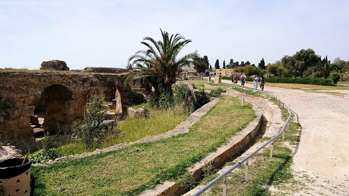 チュニジア:カルタゴ遺跡のアントニヌスの共同浴場を見下ろす8