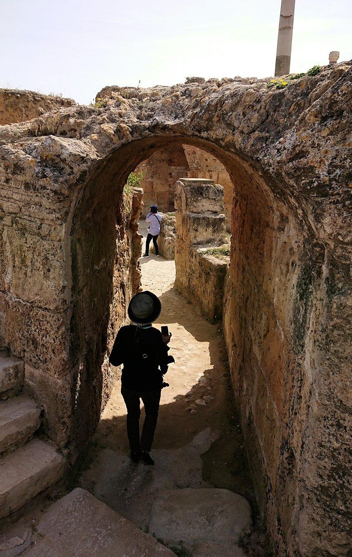 チュニジア:カルタゴ遺跡のアントニヌスの共同浴場内を見ていく1