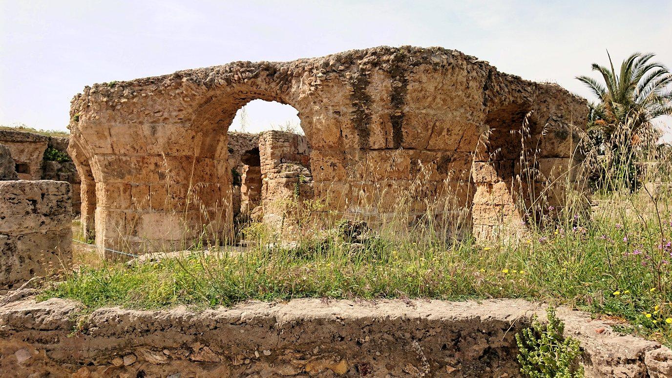 チュニジア:カルタゴ遺跡のアントニヌスの共同浴場内を見ていく4