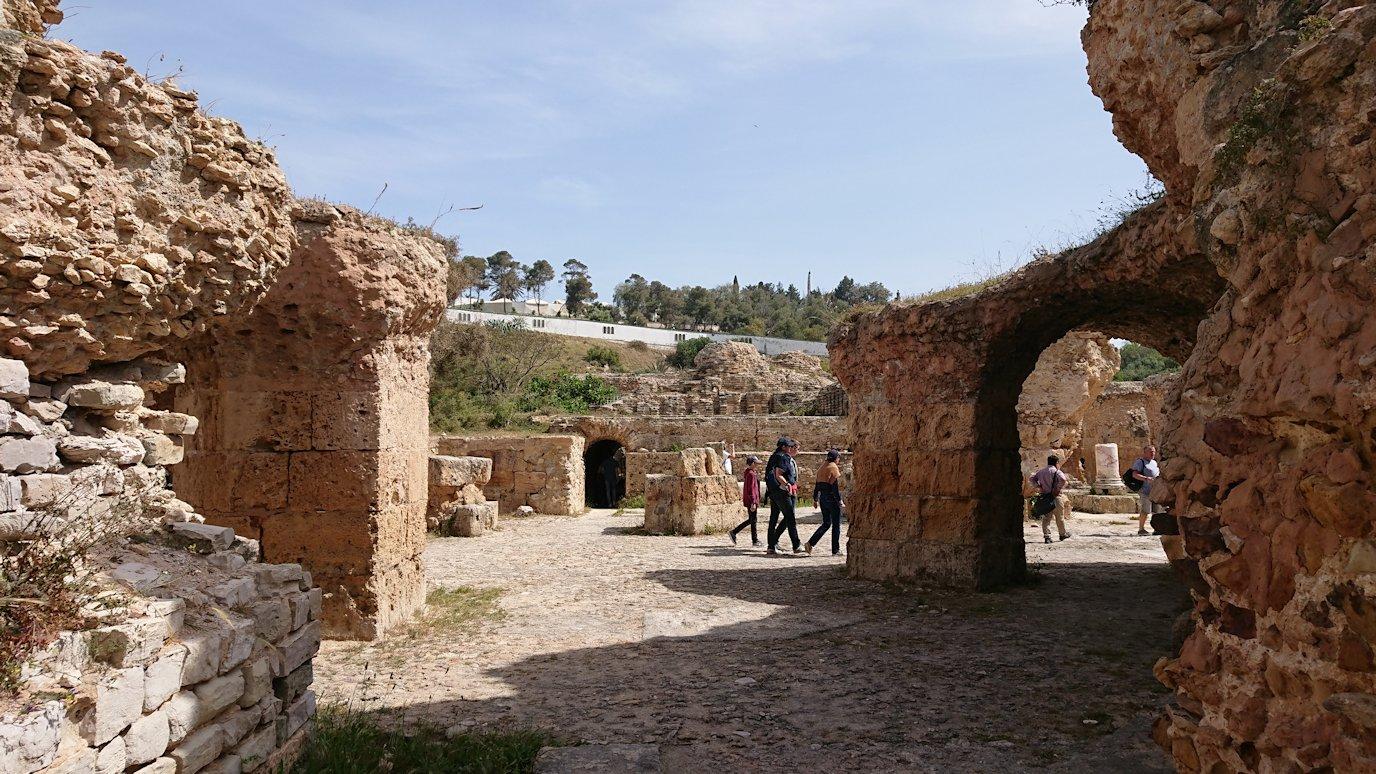 チュニジア:カルタゴ遺跡のアントニヌスの共同浴場内を見ていく5