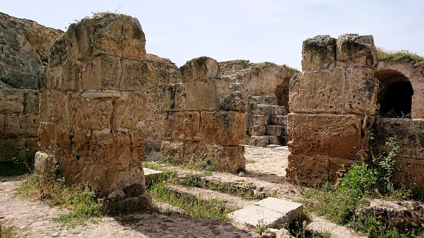 チュニジア:カルタゴ遺跡のアントニヌスの共同浴場内を見ていく6