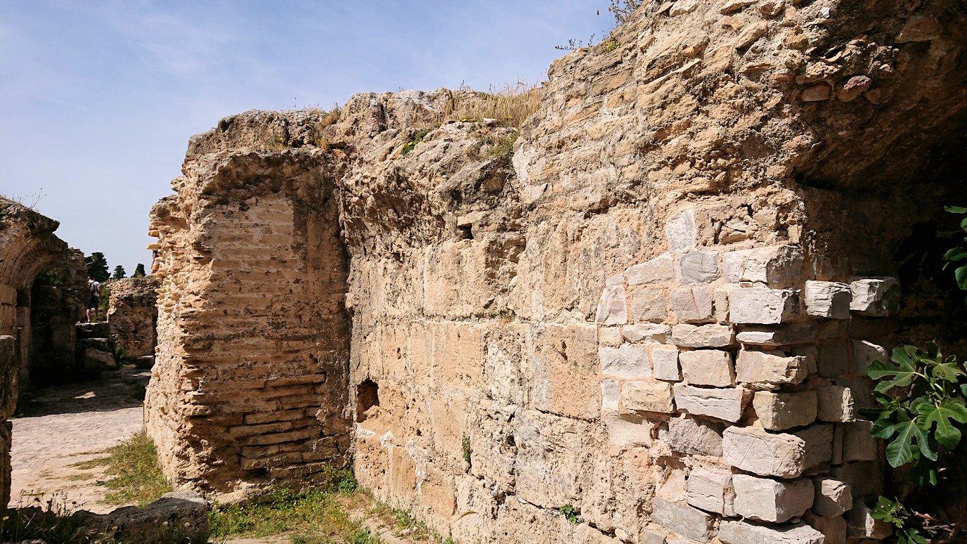 チュニジア:カルタゴ遺跡のアントニヌスの共同浴場内を見ていく7