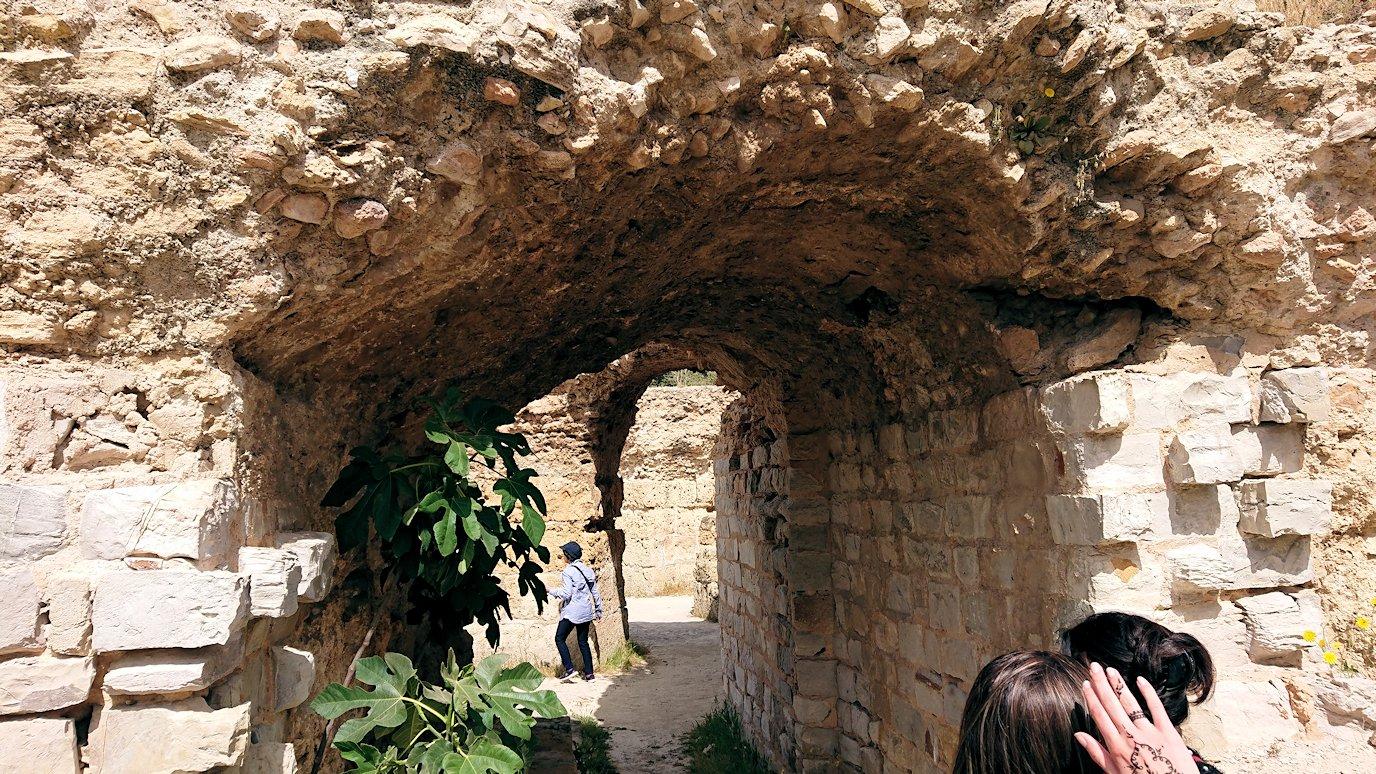 チュニジア:カルタゴ遺跡のアントニヌスの共同浴場内を見ていく8