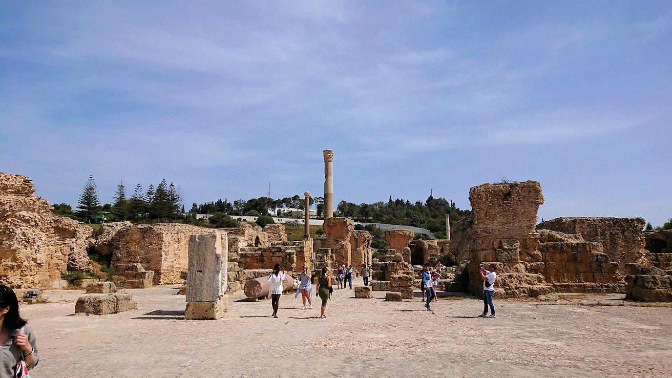 チュニジア:カルタゴ遺跡のアントニヌスの共同浴場内で激写タイム3
