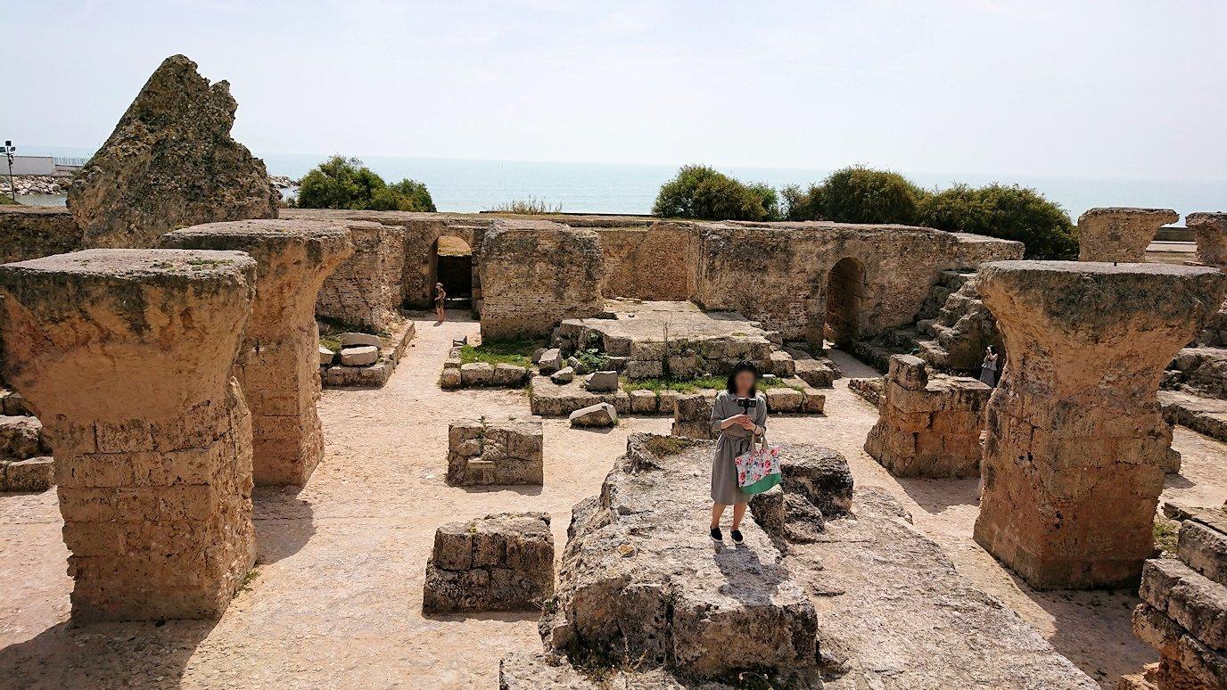 チュニジア:カルタゴ遺跡のアントニヌスの共同浴場内で記念撮影タイムが続きます1