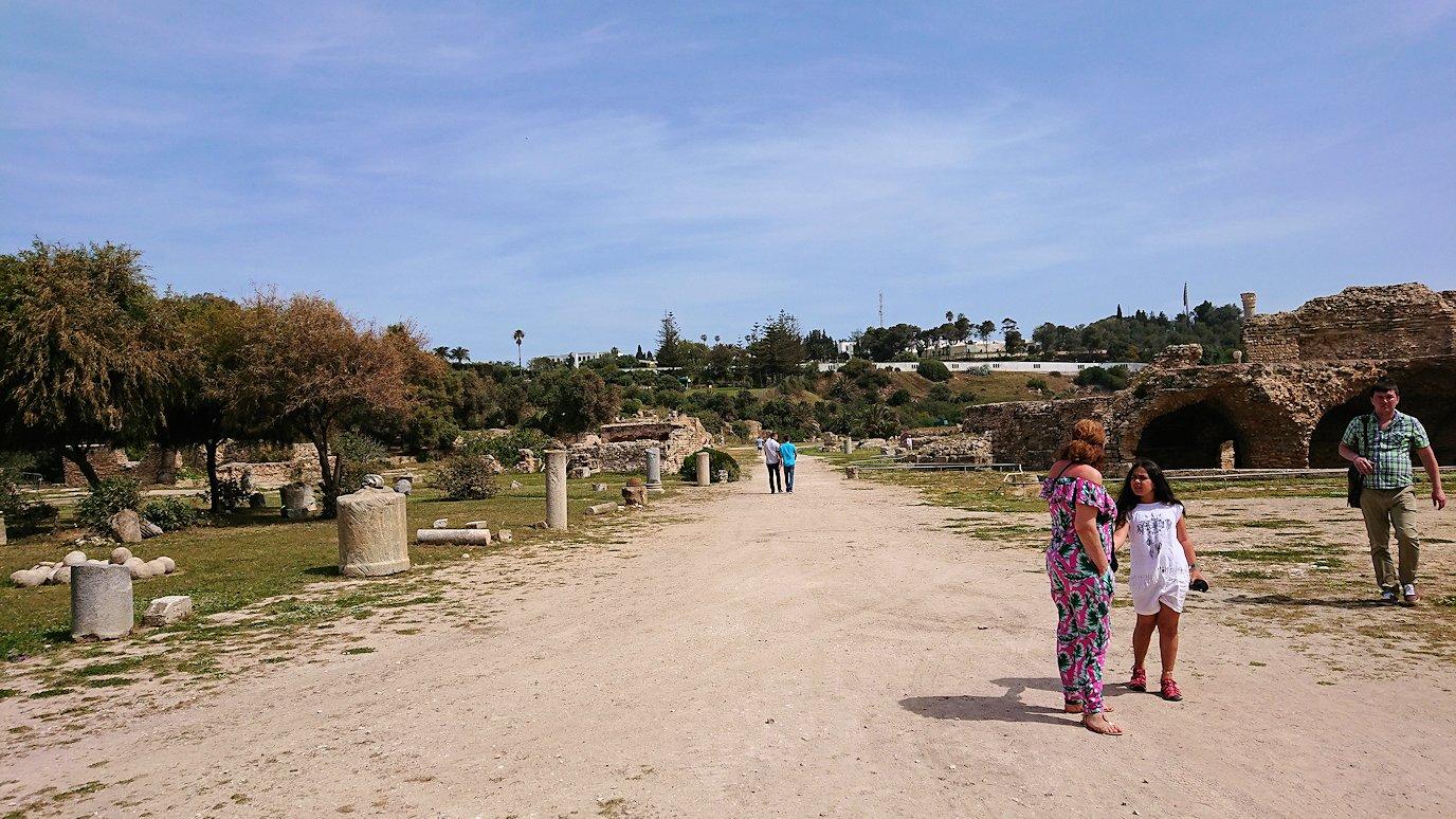チュニジア:カルタゴ遺跡のアントニヌスの共同浴場内で記念撮影タイムがひたすら続く3