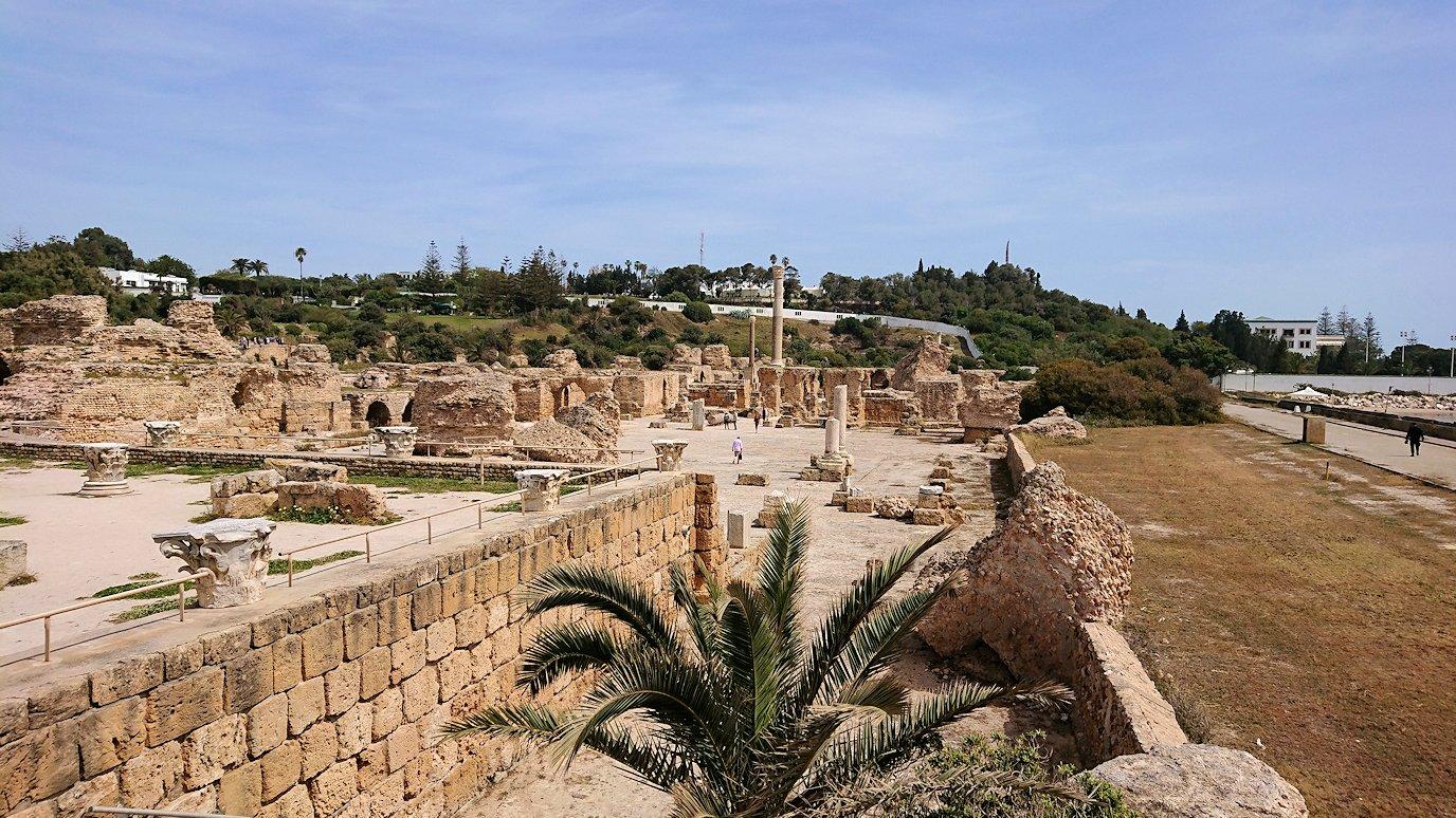 チュニジア:カルタゴ遺跡のアントニヌスの共同浴場内で最後まで粘る5