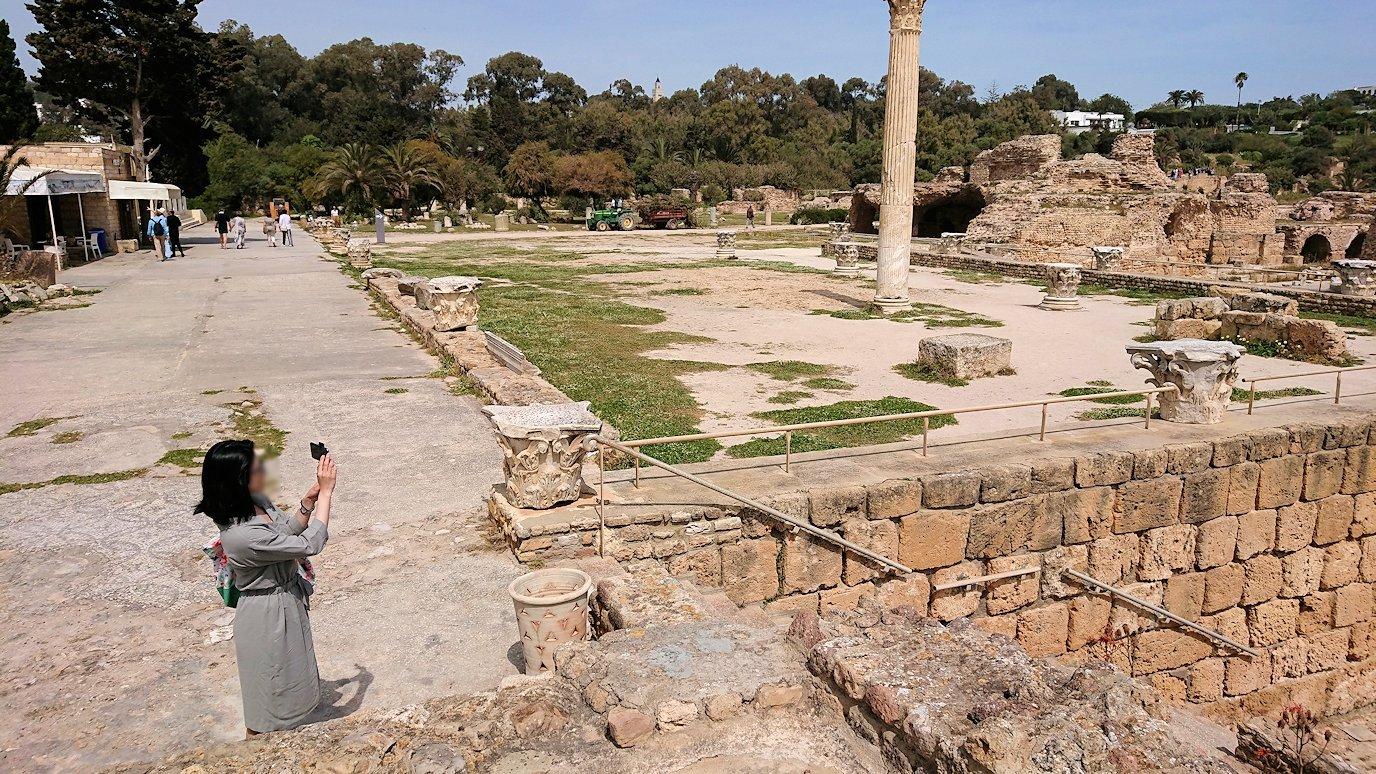 チュニジア:カルタゴ遺跡のアントニヌスの共同浴場内で最後まで粘る7