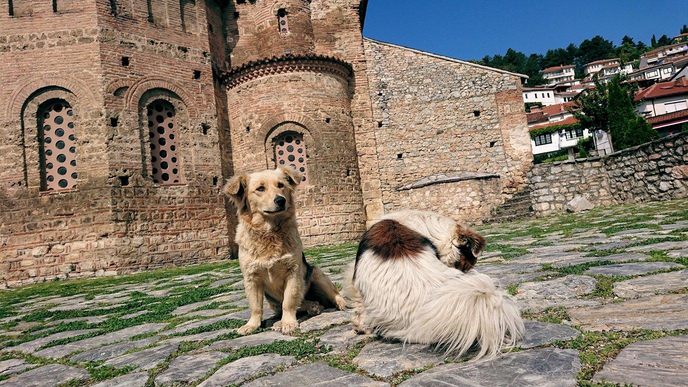 北マケドニアのオフリド湖遊覧終了しオフリドの街を歩いて聖ソフィア教会に到着2