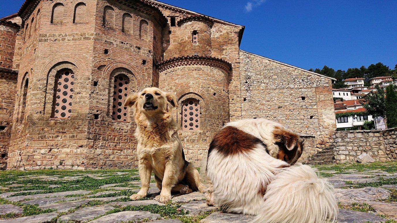 北マケドニアのオフリド湖遊覧終了しオフリドの街を歩いて聖ソフィア教会に到着3