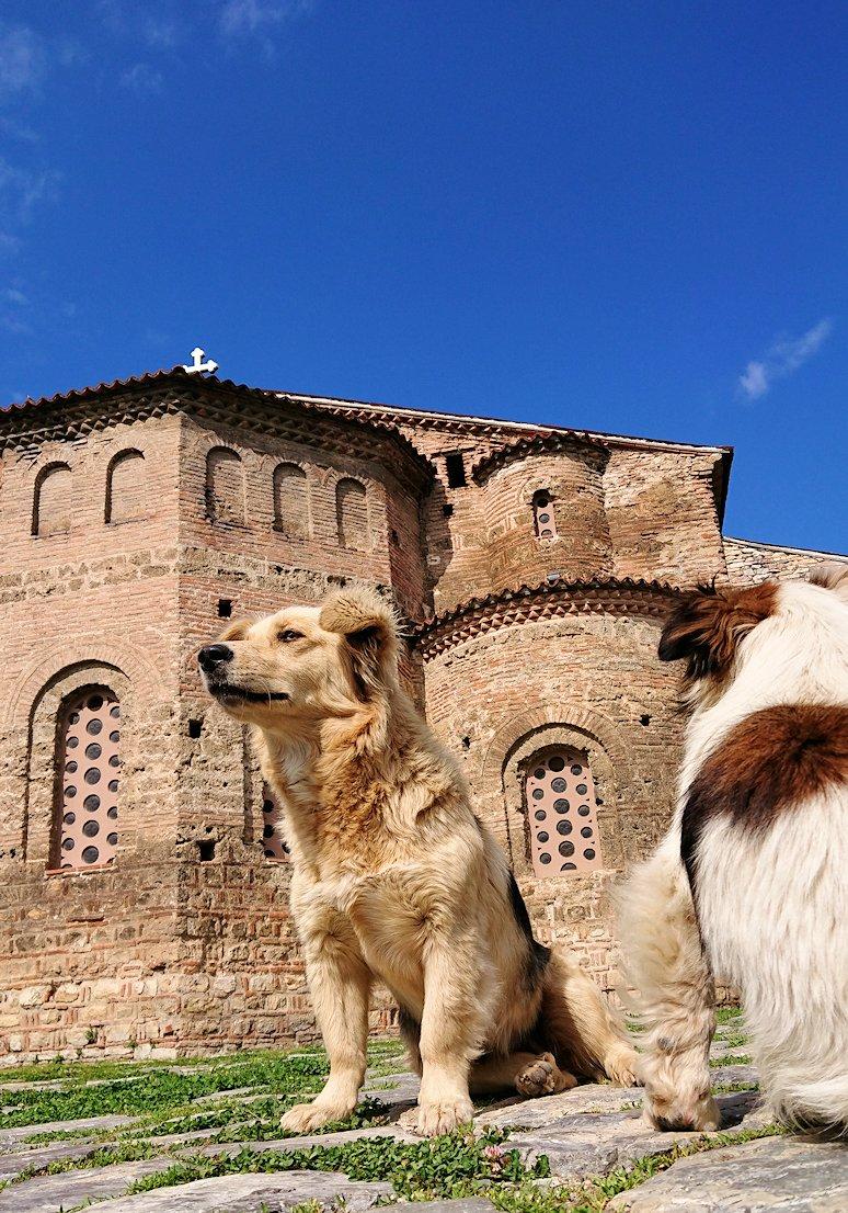 北マケドニアのオフリド湖遊覧終了しオフリドの街を歩いて聖ソフィア教会に到着4