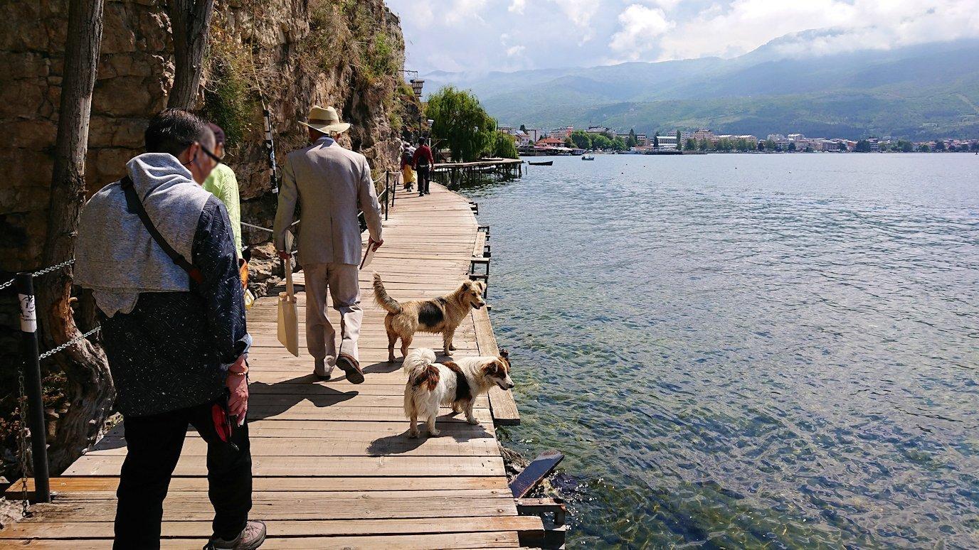 北マケドニアのオフリドで湖岸沿いを散策6