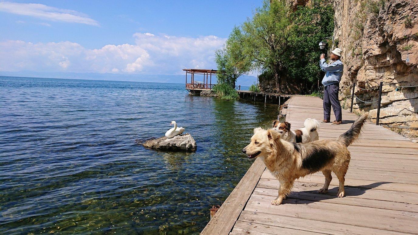 北マケドニアのオフリドで湖岸沿いを散策7