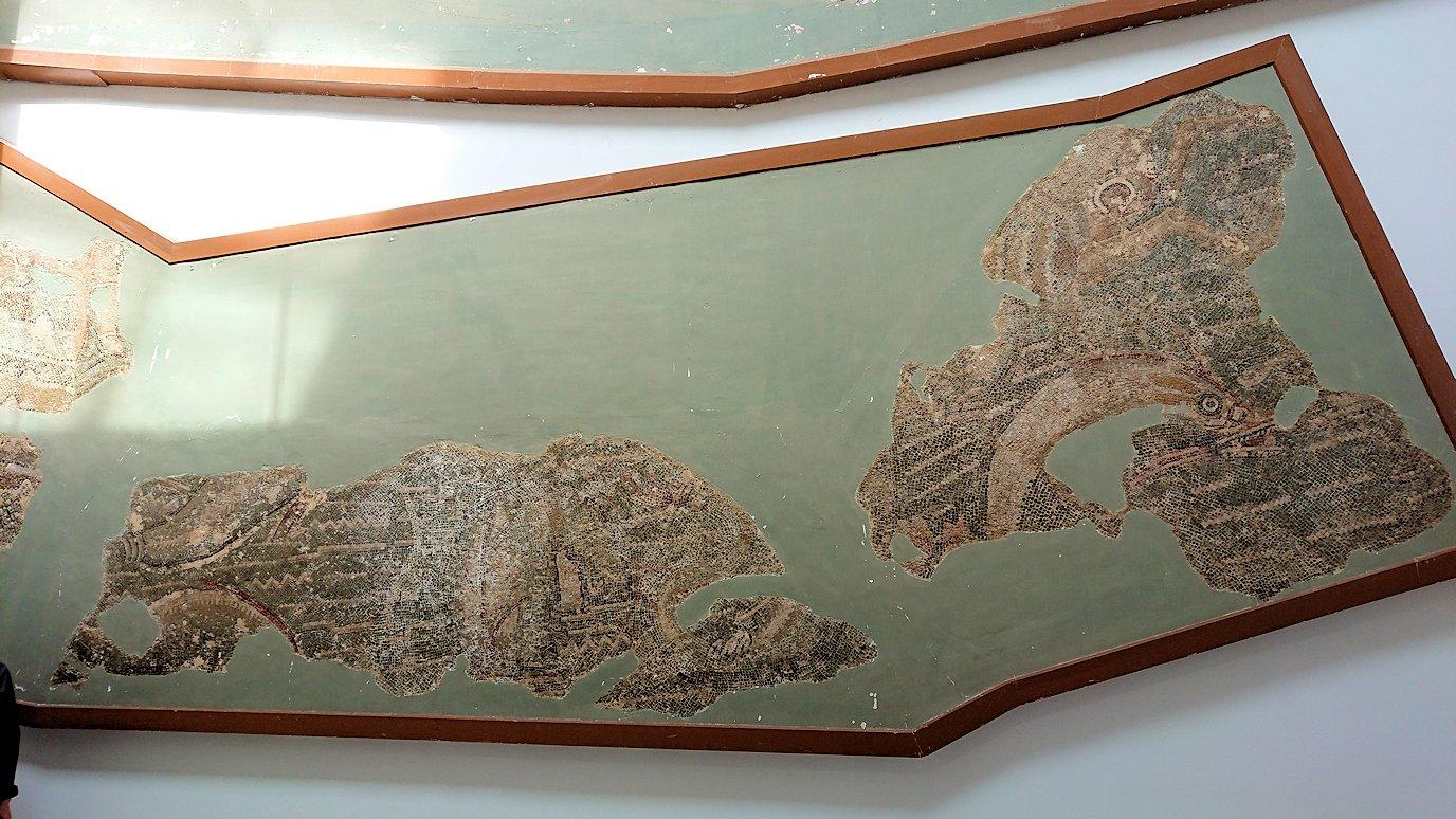 チュニスのバルドー博物館でモザイクを見学7