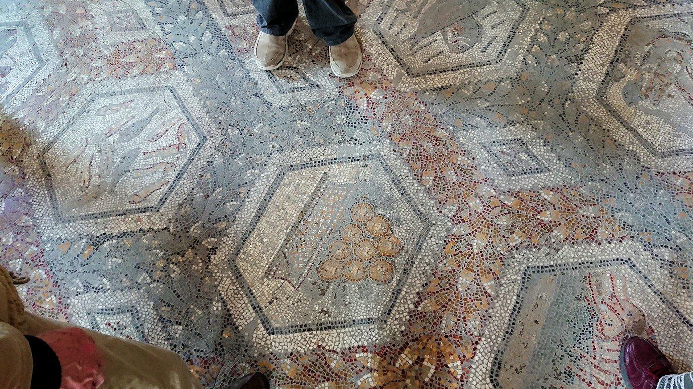 チュニスのバルドー博物館はモザイク作品で溢れています9