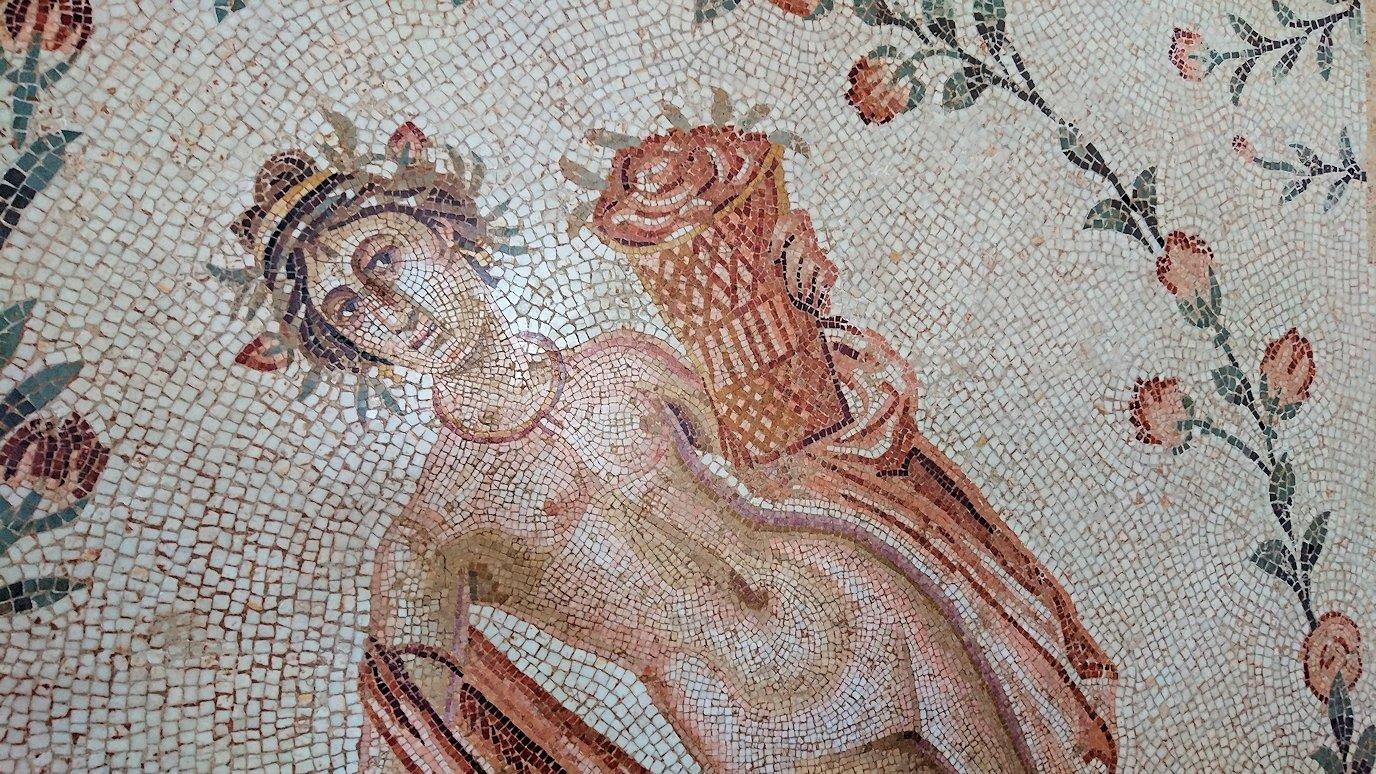 チュニスのバルドー博物館はモザイク作品で大きな作品を見学3