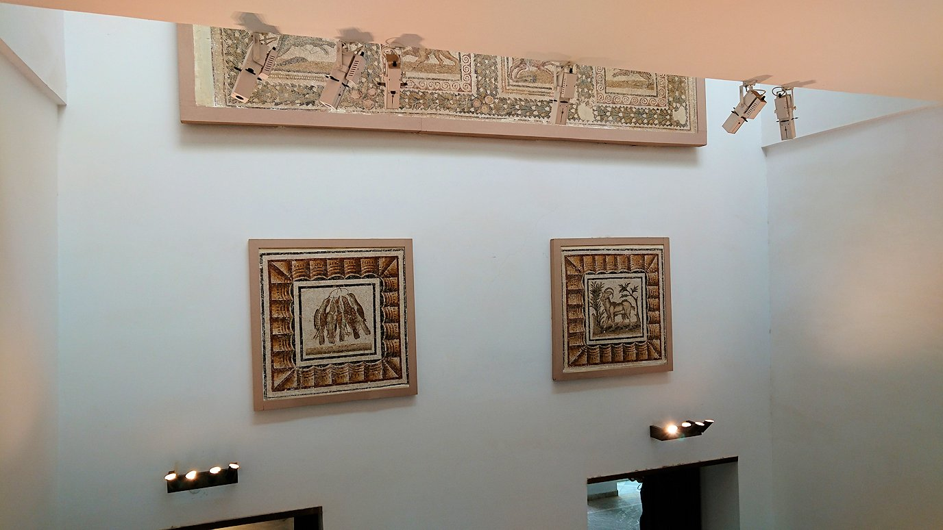 チュニスのバルドー博物館はモザイク作品で大きな作品を見学7