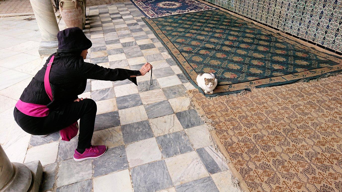 ケロアンのシディ・サハブ霊廟に中を散策8