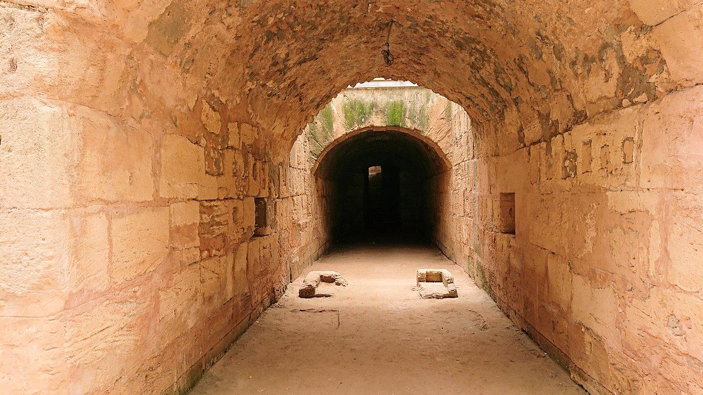 エルジェムの円形闘技場で次は地下を散策