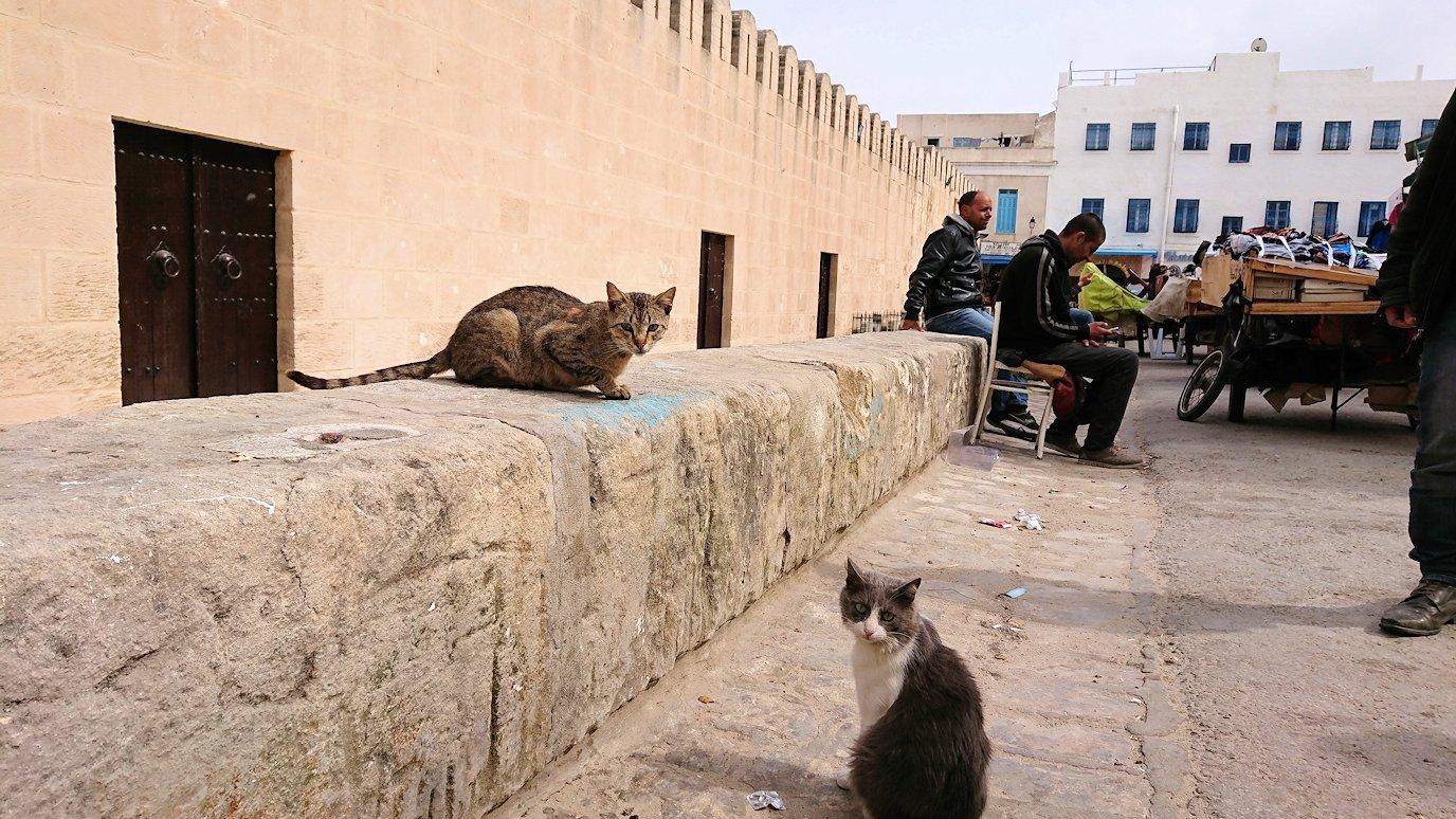 チュニジアのスースの街の旧市街を歩いて一周します2