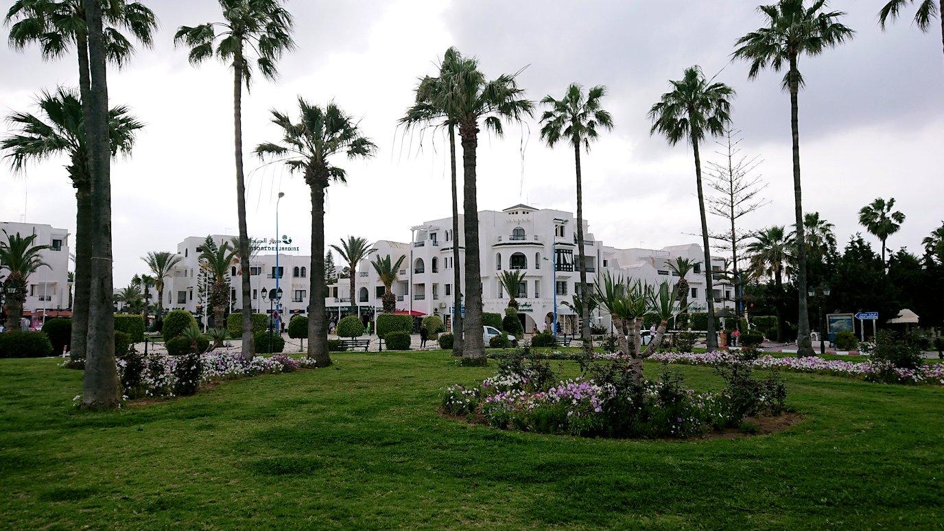 チュニジアのポートエルカンタウィのマリーナに進みます1