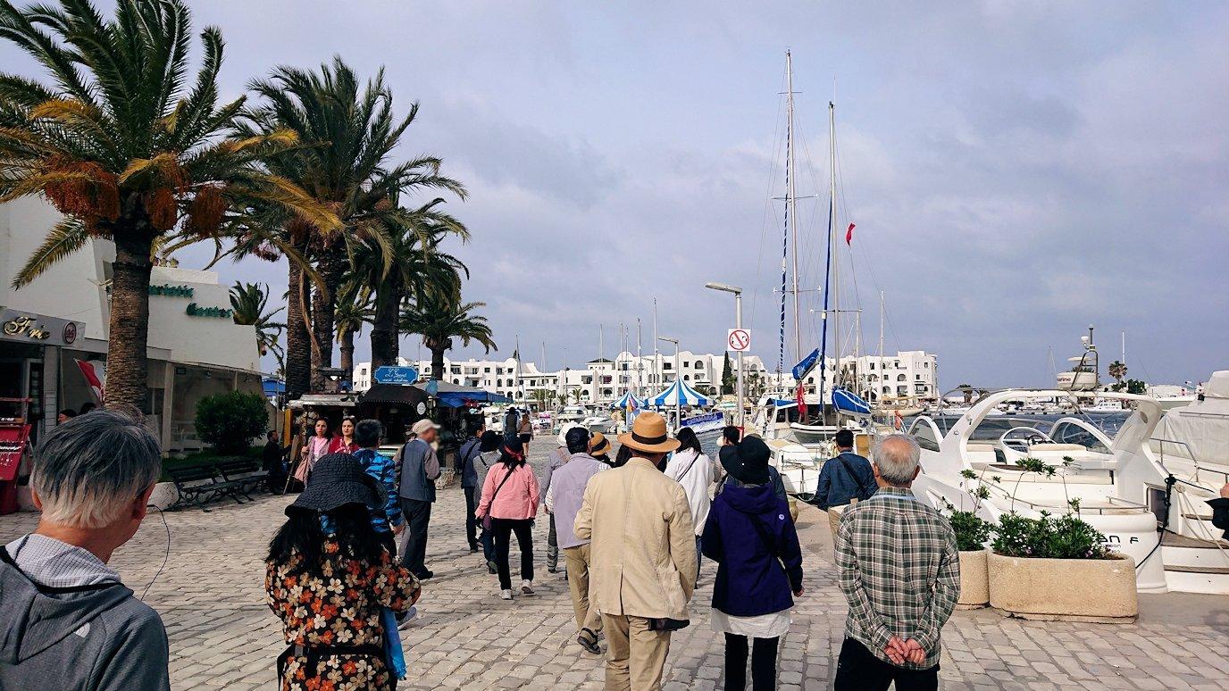 チュニジアのポートエルカンタウィのマリーナに進みます6
