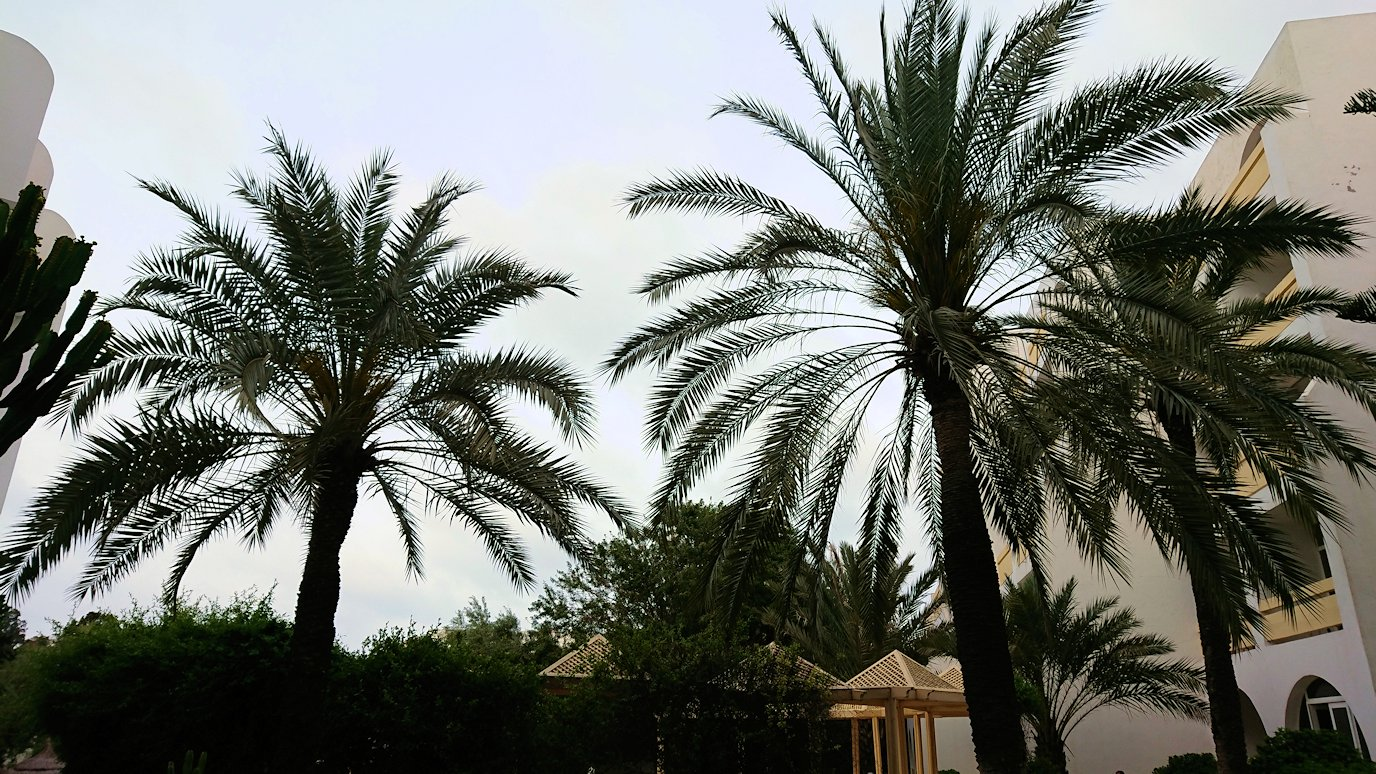 チュニジアのスースの街にある「マルハバ ロイヤル サレム」ホテルの様子を撮影8