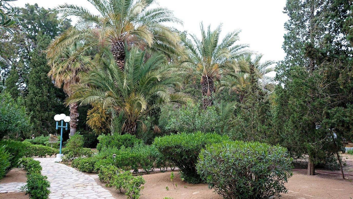 チュニジアのスースの街にある「マルハバ ロイヤル サレム」ホテル内を散策する6