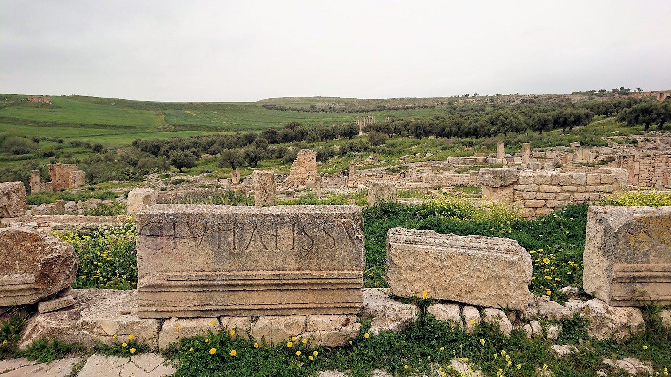 チュニジアのドゥッガ遺跡で有名なフレームがある奴隷市場後で記念撮影を3