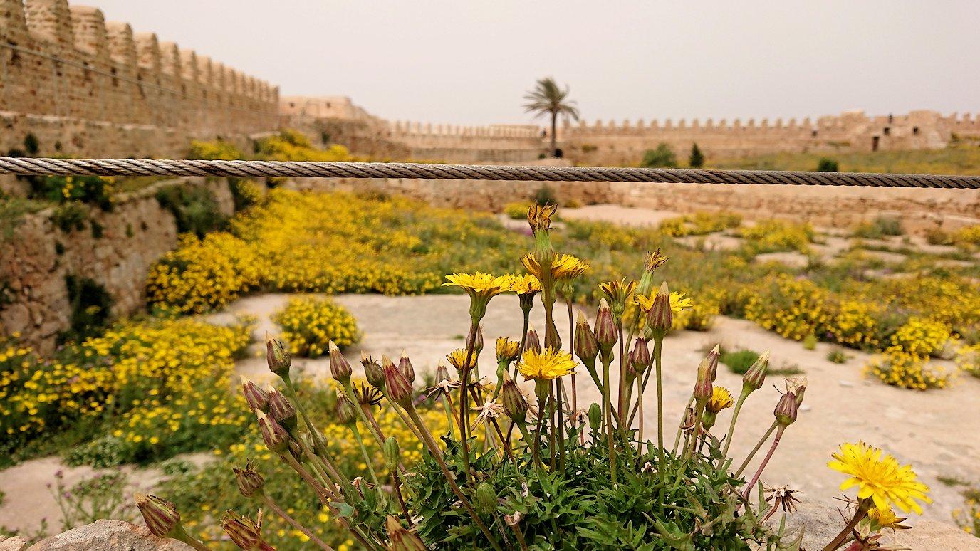 チュニジア:ケリビアの城塞内の様子は9