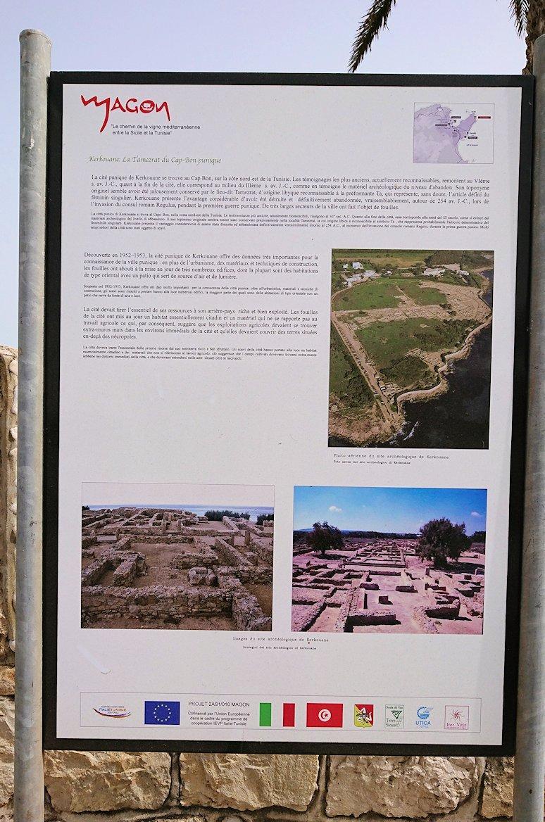 チュニジア:ボン岬からケルクアン遺跡に移動6