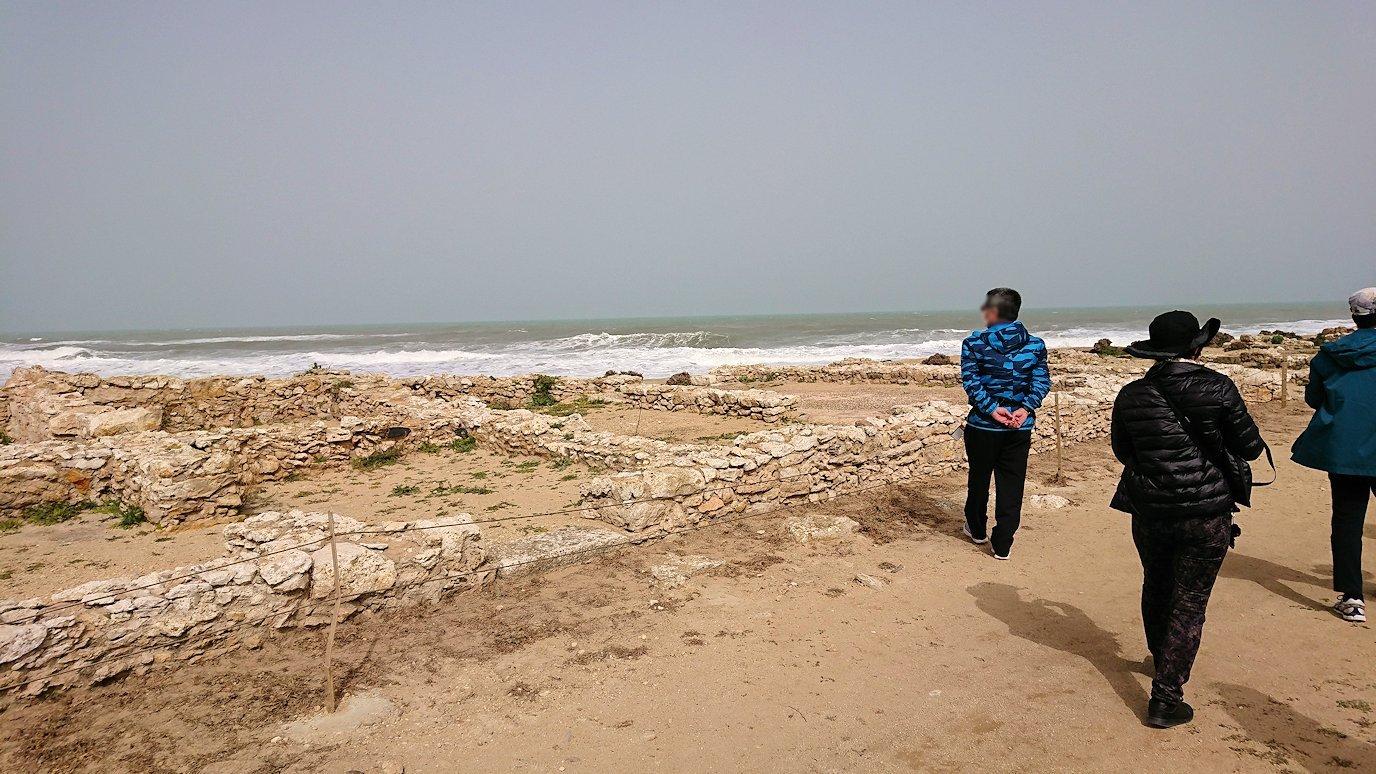 チュニジア:のケルクアン遺跡内を散策する2