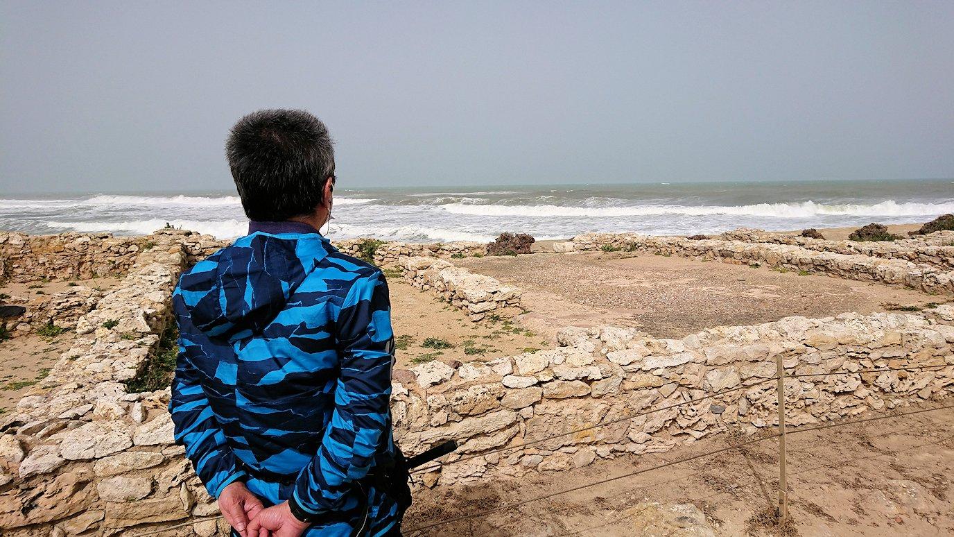 チュニジア:のケルクアン遺跡内を散策する3