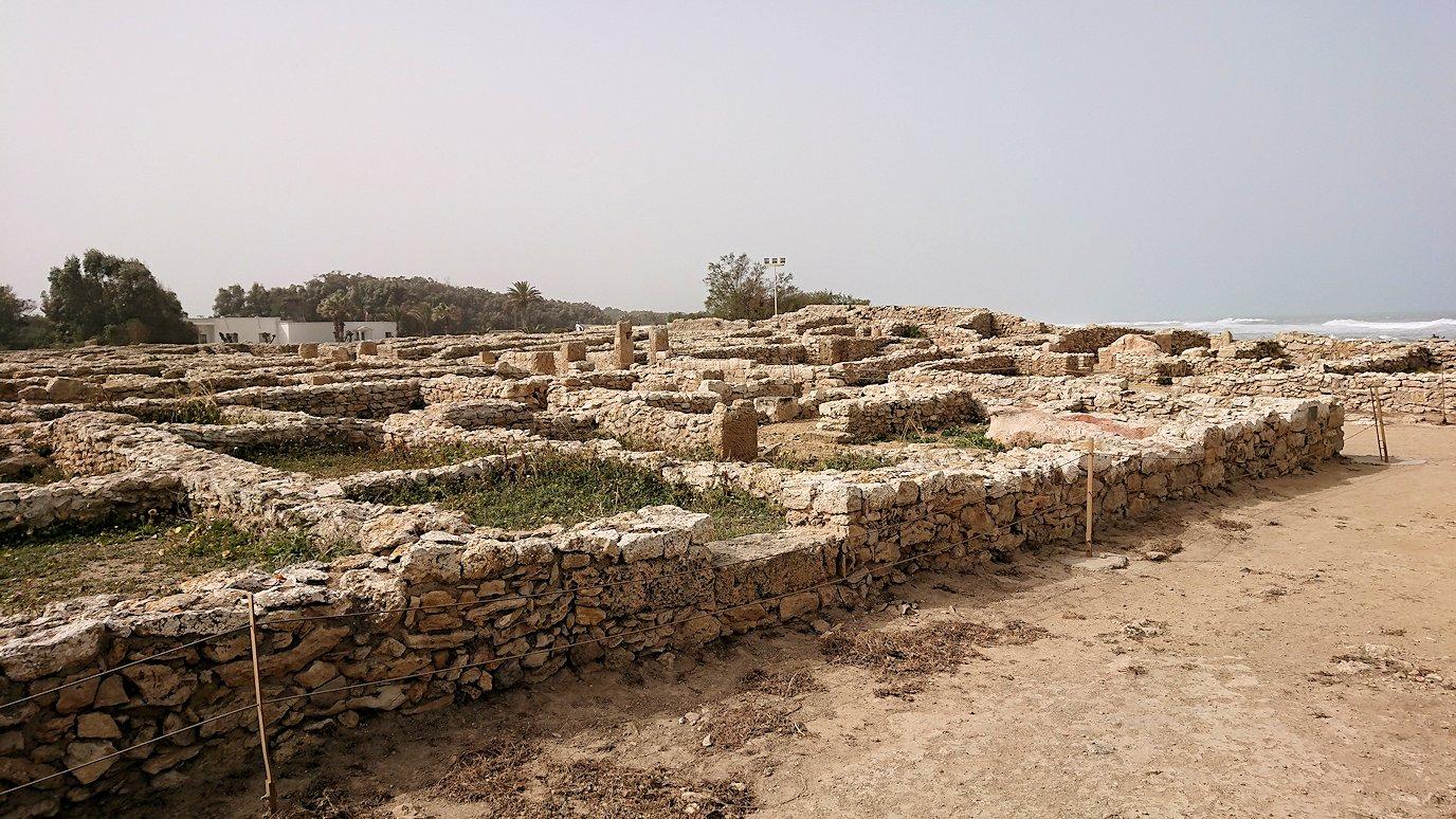 チュニジア:のケルクアン遺跡内を散策する4